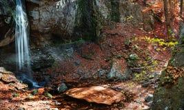 Autumn whirl Stock Photo