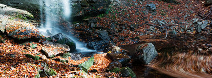 Autumn whirl Royalty Free Stock Images
