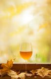 Autumn white wine Royalty Free Stock Photography