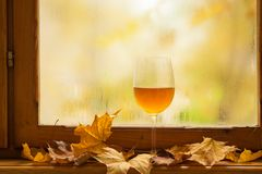 Autumn white wine Stock Photos