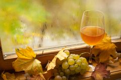 Autumn white wine Royalty Free Stock Images