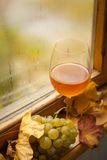 Autumn white wine Royalty Free Stock Photos