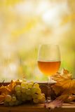 Autumn white wine Stock Photo