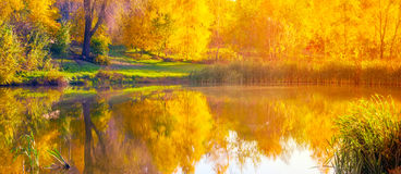 Autumn wide lake. Reflection water in morning Stock Images