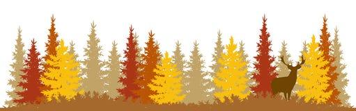 Autumn Wildlife Wallpaper Stock Image