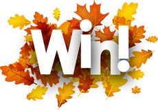 Autumn win background with leaves. Royalty Free Stock Photos