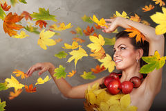 Autumn wind royalty free stock photo