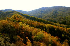 Autumn wind of the red mountain Stock Images