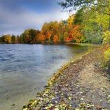 Autumn wind 1 Stock Images
