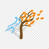 Autumn wind and tree isometric icon. 3d on a transparent background vector illustration Royalty Free Stock Photography