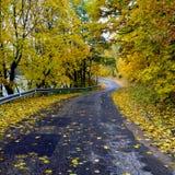 Autumn wind Stock Photography