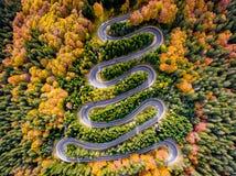 Autumn Winding Road in het Bos stock foto
