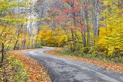 Autumn Winding Roadway Lizenzfreies Stockbild
