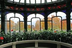 Autumn through window Stock Photos