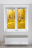 Autumn window Stock Photos