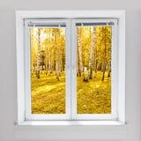 Autumn window royalty free stock photography