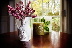 Autumn window light in living room Stock Photo