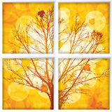 Autumn through a window Royalty Free Stock Photography