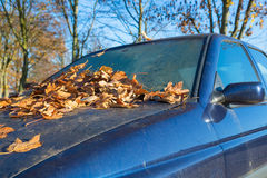 Autumn windscreen Royalty Free Stock Images