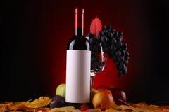 Autumn wine Stock Images