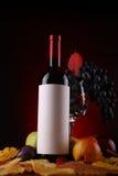 Autumn wine Royalty Free Stock Photo