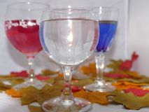 Autumn wine. Three glasses of wine one red,blue and white set among colourful autumn leaves Stock Photos