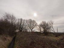 autumn winter dead grass field sunset grey overcast sky Stock Image