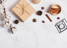 Autumn or winter decor with pine cones and cotton branch. On the light marble background royalty free stock photography