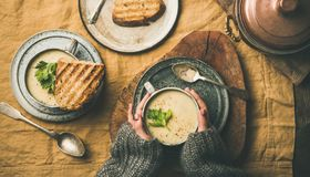 Celery cream soup, grilled bread and female hands royalty free stock image