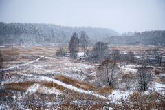 Autumn winter landscape. The field with yellow grass and snow Stock Photo