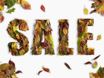 Autumn / Winter Sale Type Stock Photography