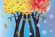 Autumn and winter trees card with leaves Stock Photos