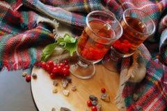 Autumn winter viburnum Tea In A Transparent Glass Mug, Berries Of A Guelder-rose stock photos