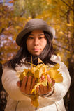 Autumn woman hands with yellow fall leaves. Close up of an autumn woman hands with yellow fall leaves Royalty Free Stock Images
