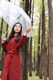 Autumn woman happy after rain walking umbrella. Autumn woman happy after rain walking with umbrella. Female model looking up at clearing sky joyful on rainy fall Royalty Free Stock Images