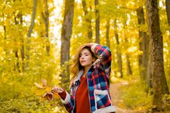 Autumn woman in autumn park with red pullover. Autumn girl. Art work of romantic girl. Warm sunny weather. Autumn royalty free stock photography