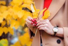 Autumn. Woman with yellow maple leaves and red berries in her hands. A girl in a coat walks in the park outdoors.
