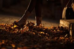 Autumn women`s boots kick fallen dry leaves. royalty free stock photos