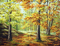 Autumn wood Royalty Free Stock Photography