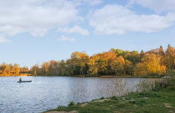 The autumn wood on the bank of the big beautiful lake. Autumn landscape: beautiful lake with trees on the shore, covered with yellow leaves Royalty Free Stock Photo