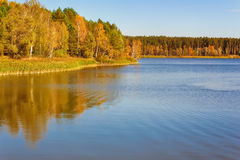 The autumn wood on the bank of the big beautiful lake Royalty Free Stock Photos