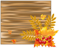 Autumn wood banner Royalty Free Stock Photo