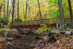 Autumn wood bridge over creek Royalty Free Stock Photo