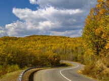 Autumn wood and road Royalty Free Stock Image