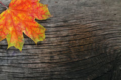 Autumn wooden background Stock Photography
