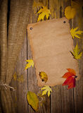 Autumn wooden background Stock Images
