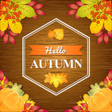 Autumn Wooden Background Royalty Free Stock Photo