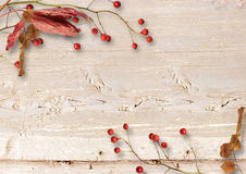Autumn wooden background with a branch of mountain ash Stock Photos