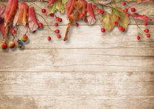 Autumn wooden background with a branch of mountain ash Royalty Free Stock Photos