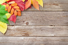 Autumn wooden background Royalty Free Stock Image